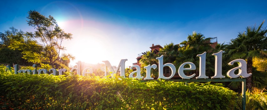 Properties for sale and rent in Alminar de Marbella