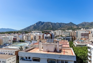 Show detail information about rental property: Marbella Center