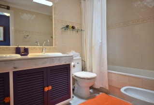 Show detail information about rental property: Los Potros, Nueva Andaluc�a
